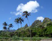 Reiseinformationen und Tips Kapverdische Inseln