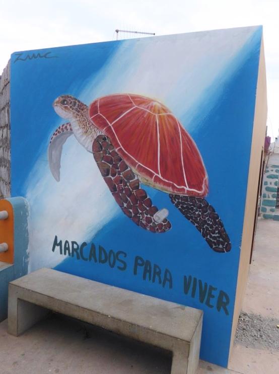 Wandmalerei Meeresschildkröte
