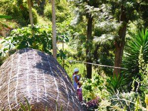 Kapverdischer Insel - Sommer - exotisches Tal von Paul